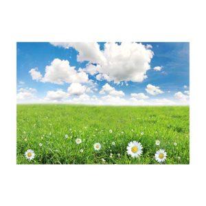 A2-grass field